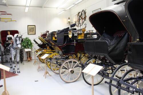 036 Museum-Bilder