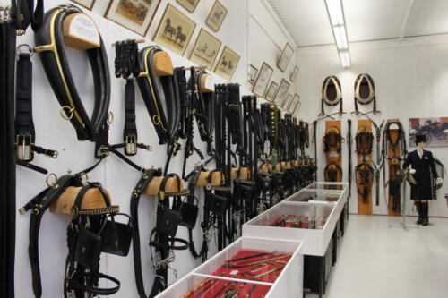 038 Museum-Bilder